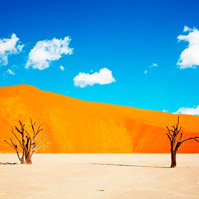 Safari, Sand Dunes & Kalahari Adventure